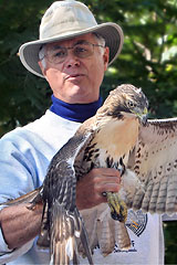 Russ & Red-Tailed Hawk